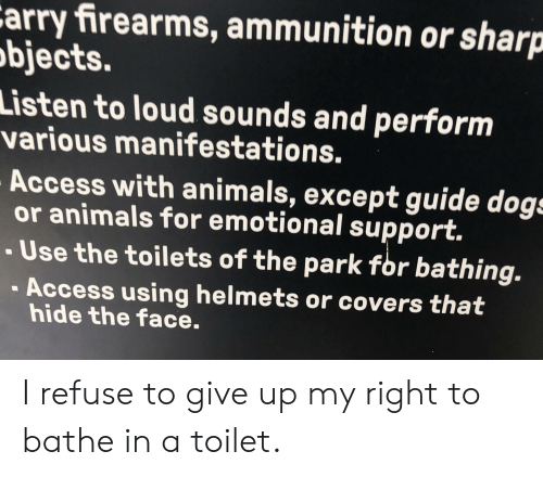 Animals, Dogs, and Access: Carry firearms, ammunition or sharp  objects.  Listen to loud sounds and perform  various manifestations.  Access with animals, except guide dogs  or animals for emotional support.  -Use the toilets of the park for bathing.  Access using helmets or covers that  hide the face. I refuse to give up my right to bathe in a toilet.