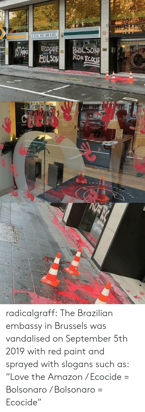 """Amazon, Target, and Tumblr: CASA DO BRASIL  BOLSONA  Ro ECOCIP  ECOGIDE  BOLSON  350   CHOO radicalgraff:   The Brazilian embassy in Brussels was vandalised on September 5th 2019  with red paint and sprayed with slogans such as: """"Love the Amazon /  Ecocide = Bolsonaro / Bolsonaro = Ecocide�"""