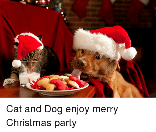 christmas party and merry christmas cat and dog enjoy merry christmas party - Merry Christmas Cat