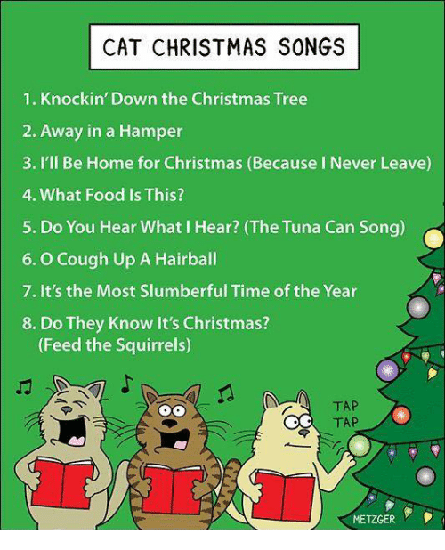 memes christmas tree and squirrel cat christmas songs 1 knockin down - Christmas Song Do You Hear What I Hear