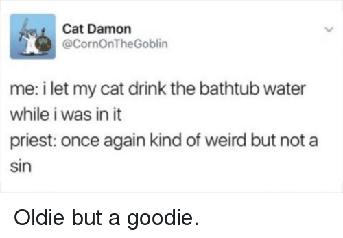 Weird, Water, and Cat: Cat Damon  @CornOnTheGoblin  me: i let my cat drink the bathtub water  while i was in it  priest: once again kind of weird but not a  Sin Oldie but a goodie.