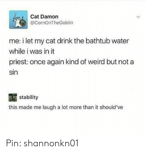 Weird, Water, and Cat: Cat Damon  @CornOnTheGoblin  me: i let my cat drink the bathtub water  while i was in it  priest: once again kind of weird but not a  sin  stability  this made me laugh a lot more than it should've Pin: shannonkn01