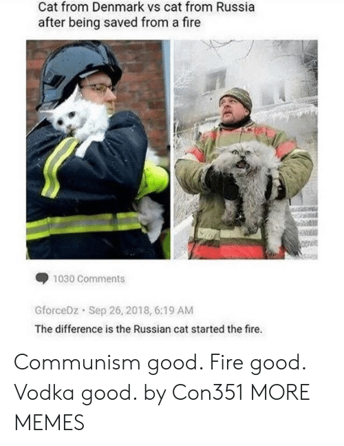 Dank, Fire, and Memes: Cat from Denmark vs cat from Russia  after being saved from a fire  1030 Comments  GforceDz Sep 26, 2018, 6:19 AM  The difference is the Russian cat started the fire. Communism good. Fire good. Vodka good. by Con351 MORE MEMES