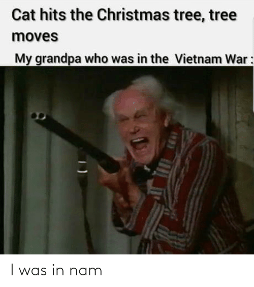Christmas, Grandpa, and Christmas Tree: Cat hits the Christmas tree, tree  moves  My grandpa who was in the Vietnam War: I was in nam