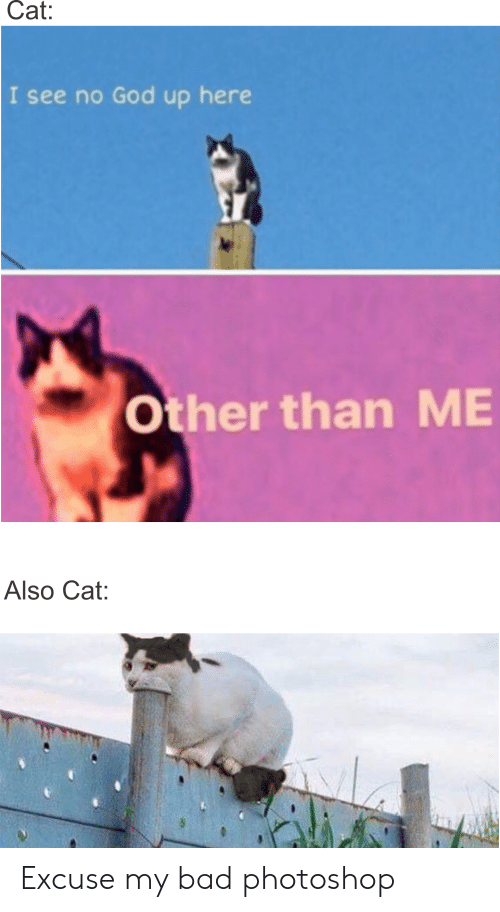 Cat I See No God Up Here Other Than ME Also Cat Excuse My Bad ...