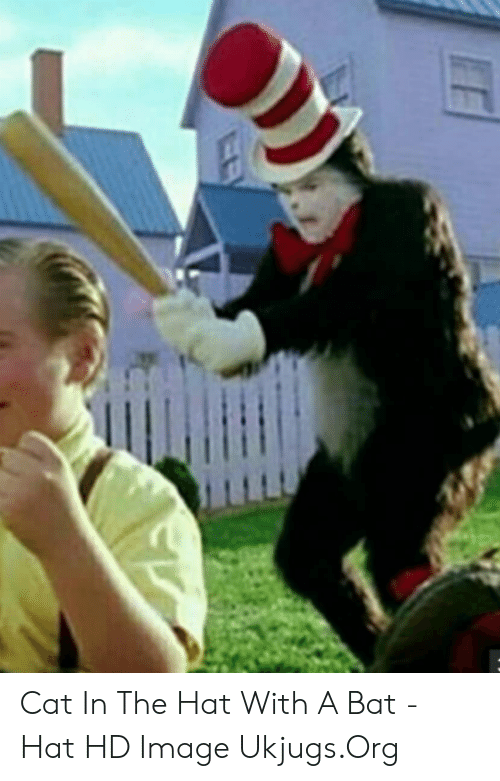 🔥 25+ Best Memes About Cat in the Hat With a Bat   Cat in ...