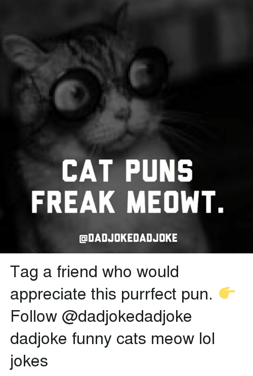 Cat Puns Freak Meowt Odadjokedad Joke Tag A Friend Who