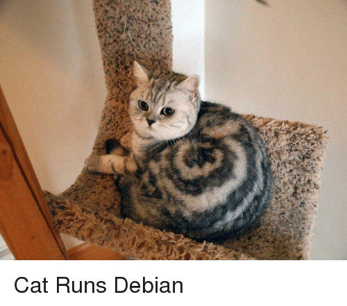Debian and Debian Meme on ME ME