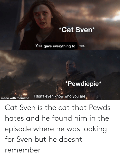 Cat, Looking, and Him: Cat Sven is the cat that Pewds hates and he found him in the episode where he was looking for Sven but he doesnt remember