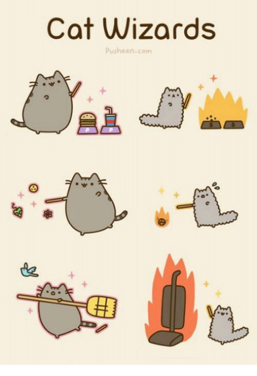 cat wizards pusheen com 17098239 cat wizards pusheencom meme on me me