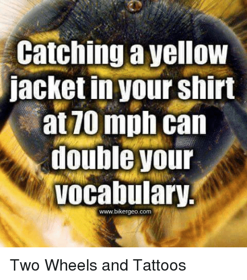 Tattoos, Tattoo, and Girl Memes: catching a yellow  jacket in your shirt  at10 mph can  double your  Vocabulary.  www.bikergeo.com Two Wheels and Tattoos