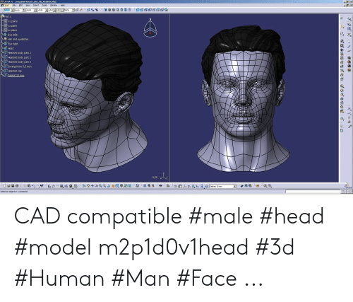 CATIA V5 M2p1d0v1head and VR_headsetstp Start File Edit