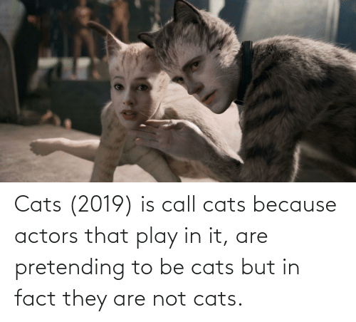 Cats, Play, and They: Cats (2019) is call cats because actors that play in it, are pretending to be cats but in fact they are not cats.