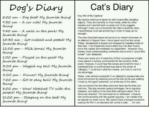 "Bones, Cats, and Dank: Cat's Diary  Dog's Diary  Day 983 of My Captivity  8:00 am Dog food My favorite thing  My captors continue to taunt me with bizarre little dangling  7:30 am A car ride! My favorite  objects. They dine lavishly on fresh meat, while the other  inmates and I are fed hash or some sort of dry nuggets  Although I make my contempt for the rations perfectly clear  7:40 am A walk in the park My  l nevertheless must eat something in order to keep up my  strength.  favorite thing!  The only thing that keeps me going is my dream of escape. In  10:30 am Got rubbed and petted My  an to them, I once again vomit on the carpet  Today decapitated a mouse and dropped its headless body at  favorite thing!  their feet. Ihad hoped this would strike fear into their hearts  12:00 pm Milk bones My favorite  since this clearly demonstrates my capabilities. However, they  merely made condescending comments about what a ""good little  hunter"" I am, Bastards!  1:00 pm Played in the yard My  There was some sort of assembly of their accomplices tonight.  favorite thing!  I was placed in solitary confinement for the duration of the  event. However, could hear the noises and smell the food. I  3:00 pm Wagged my tail My favorite  overheard that my confinement was due to the power of  allergies."" must learn what this means, and how to use it to  s oo pm my advantage  successful in an attempt to assassinate one  Dinner! My favorite thing.  Today was almost of my tormentors by weaving around his feet as he was walking  7:00 pm Got to play ball My favorite  must try this again tomorrow, but at the top of the stairs  am convinced that the other prisoners here are flunkies and  8:00 pm Wow! Watched TV with the  snitches. The dog receives special privileges. He is regularly  released, and seems to be more than willing to return. He is  people' My favorite thing!  obviously retarded. The bird must be an informant. I observe  11:00 pm Sleeping on the bed My  him communicating with the guards regularly, I am certain that  captors have arranged protective  cell  so he is safe for now.  custody for him in an elevated favorite thing!"
