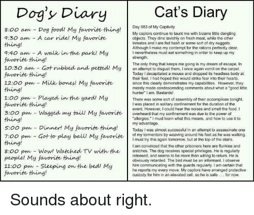 """Assassination, Bodies , and Bones: Cat's Diary  Dog's Diary  Day 983 of My Captivity  8:00 am Dog food! My favorite thing  My captors continue to taunt me with bizarre little dangling  a:30 am A car ride! My favorite  objects. They dine lavishly on fresh meat, while the other  inmates and I are fed hash or some sort of dry nuggets  Although make my contempt for the rations perfectly clear  9:40 am A walk in the parkl My  nevertheless must eat something in order to keep up my  strength.  favorite thing!  The only thing that keeps me going is my dream of escape. In  10:30 am Got rubbed and petted My  an attempt to disgust them, l once again vomit on the carpet  favorite thing!  Today decapitated a mouse and dropped its headless body at  their feet. Ihad hoped this would strike fear into their hearts  12:00 pm Milk bones My favorite  since this clearly demonstrates my capabilities. However, they  merely made condescending comments about what a """"good little  hunter"""" I am, Bastards!  1:00 pm Played in the yard My  There was some sort of assembly of their accomplices tonight.  favorite thing!  I was placed in solitary confinement for the duration of the  event. However, I could hear the noises and smell the food. I  3:00 pm Wagged my taiu My favorite overheard that my confinement was due to the power of  thing!  allergies."""" must learn what this means, and how to use it to  my advantage  5:00 pm Dinner! My favorite thing  Today was almost successful in an attempt to assassinate one  of my tormentors by weaving around his feet as he was walking  7:00 pm Got to play ball My favorite  I must try this again tomorrow, but at the top of the stairs  am convinced that the other prisoners here are flunkies and  8:00 pm Wow! Watched TV with the snitches. The dog receives special privileges. He is regularly  released, and seems to be more than willing to return. He is  people' My favorite thing!  obviously retarded. The bird must be an informant. I observe  11:00 pm Sleeping  on the """