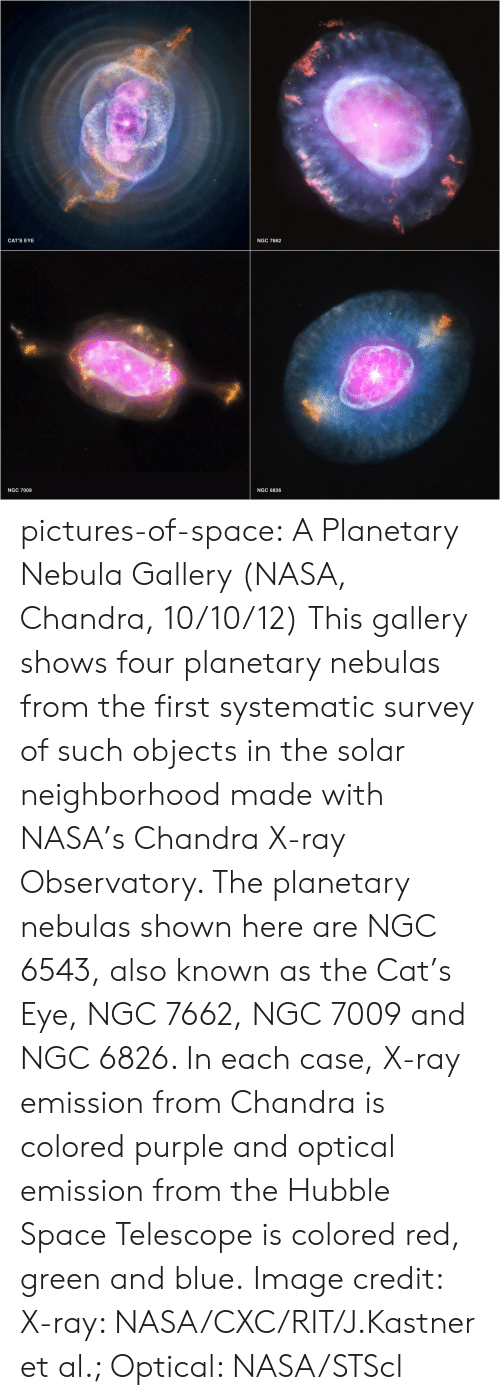 Cats, Nasa, and Tumblr: CAT'S EYE  NGC 7662  NGC 7009  NGC 6826 pictures-of-space:    A Planetary Nebula Gallery (NASA, Chandra, 10/10/12)     This gallery shows four planetary nebulas from the first systematic survey of such objects in the solar neighborhood made with NASA's Chandra X-ray Observatory. The planetary nebulas shown here are NGC 6543, also known as the Cat's Eye, NGC 7662, NGC 7009 and NGC 6826. In each case, X-ray emission from Chandra is colored purple and optical emission from the Hubble Space Telescope is colored red, green and blue.     Image credit: X-ray: NASA/CXC/RIT/J.Kastner et al.; Optical: NASA/STScI
