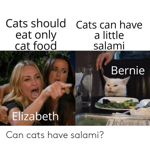 Cats Should Cats Can Have Eat Only Cat Food a Little Salami
