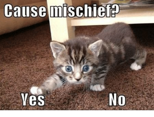 cause-mischief-yes-17640860.png