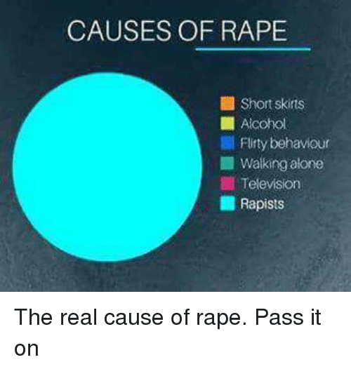 Image result for causes of rape meme