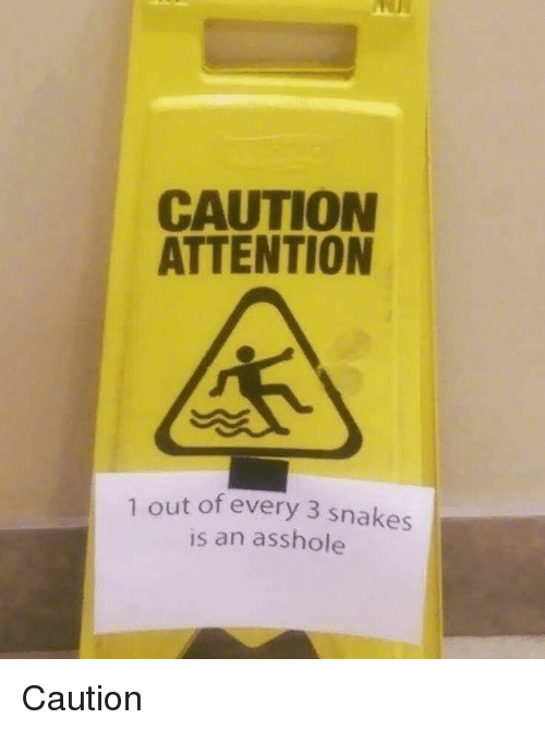 Snakes, Asshole, and Attention: CAUTION  ATTENTION  1 out of every 3 snakes  is an asshole Caution