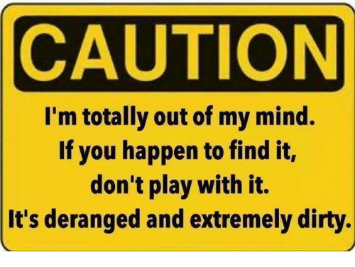 Memes, Dirty, and Mind: CAUTION  I'm totally out of my mind.  If you happen to find it,  don't play with it.  It's deranged and extremely dirty.