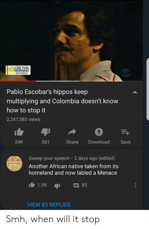 Reddit, Smh, and Taken: CBS THIS  MORNING  SATURDAY  Pablo Escobar's hippos keep  multiplying and Colombia doesn't know  how to stop it  2,247,585 views  24K  561  Share Download Save  Sweep your speech 2 days ago (edited)  Another African native taken from its  homeland and now labled a Menace  1.5K 85  VIEW 85 REPLIES Smh, when will it stop