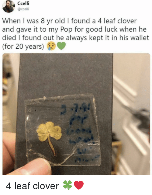 Pop, Good, and Old: Ccelli  @ccelli  When I was 8 yr old I found a 4 leaf clover  and gave it to my Pop for good luck when he  died I found out he always kept it in his wallet  (for 20 years) 4 leaf clover 🍀❤️