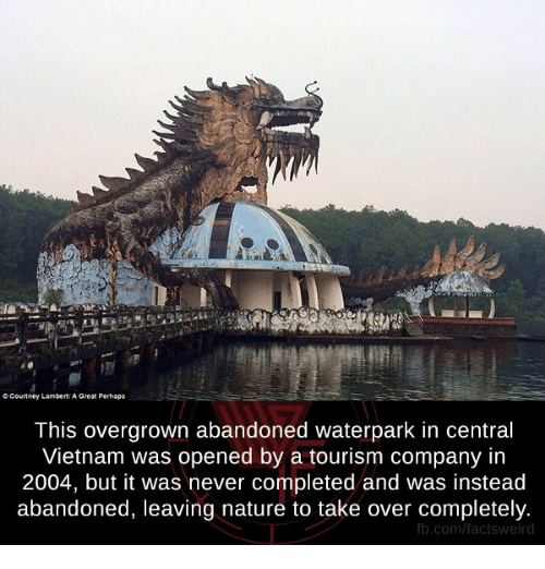 Memes, fb.com, and Nature: CCourtney Lambert A Great Perhaps  This overgrown abandoned waterpark in central  Vietnam was opened by a tourism company in  2004, but it was never completed and was instead  abandoned, leaving nature to take over completely  fb.com/factsv weird