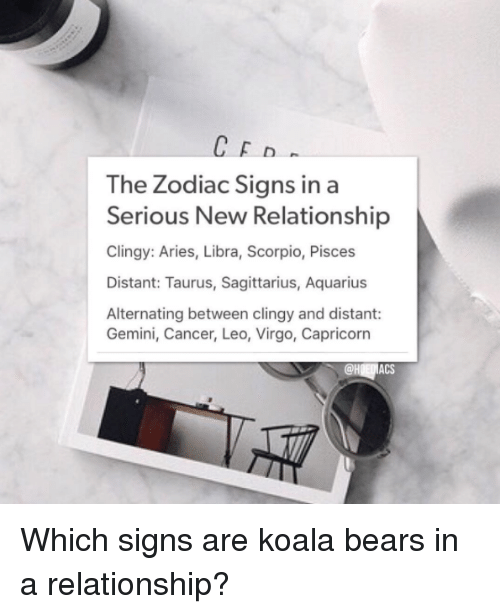 CED the Zodiac Signs in a Serious New Relationship Clingy Aries