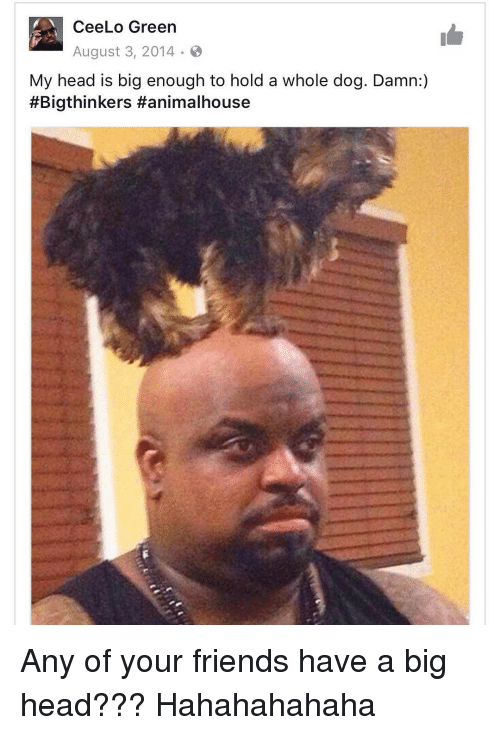 Memes, 🤖, and Dog: Cee Lo Green  August 3, 2014  My head is big enough to hold a whole dog. Damn:  #Bigthinkers Hanimalhouse Any of your friends have a big head??? Hahahahahaha