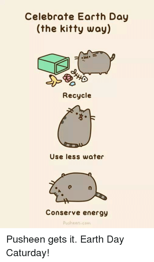Caturday, Energy, and Memes: Celebrate Earth Day  (the kitty way)  Recycle  Use less water  Conserve energy  push een corn Pusheen gets it. Earth Day Caturday!