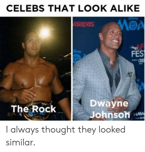 Af, Funny, and The Rock: CELEBS THAT LOOK ALIKE  MOA  aianas  AF  FES  Dwayne  Johnsoh w  The Rock  HAW I always thought they looked similar.