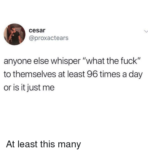 """Fuck, Day, and Whisper: cesar  @proxactears  anyone else whisper """"what the fuck""""  to themselves at least 96 times a day  or is it just me At least this many"""