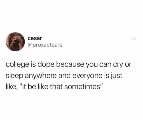 "Be Like, College, and Dank: cesar  @proxactears  college is dope because you can cry or  sleep anywhere and everyone is just  like, ""it be like that sometimes"""