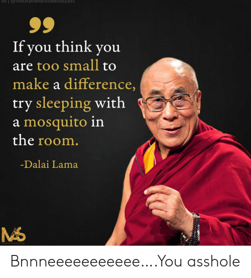Dalai Lama, Sleeping, and Make A: Cess  If you think you  are too small to  make a difference,  try sleeping with  a mosquito in  the room.  -Dalai Lama Bnnneeeeeeeeeee….You asshole