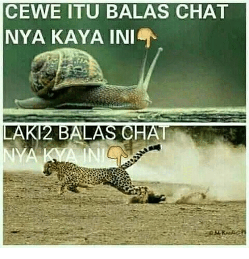 Chat, Indonesian (Language), and Nya: CEWE ITU BALAS CHAT  NYA KAYA INI