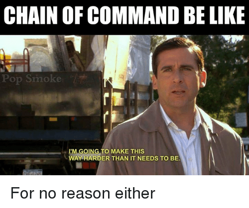 following chain of command They may constantly leap up the chain of command until they find  immediately following that discussion, speak to the client or superior who.