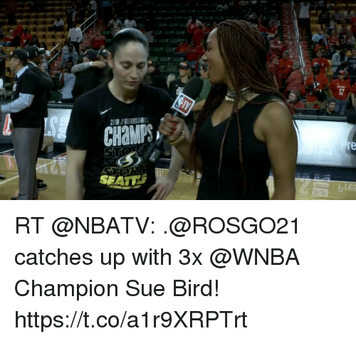 Memes, WNBA (Womens National Basketball Association), and 🤖: CHaMPS  re  SEATU RT @NBATV: .@ROSGO21 catches up with 3x @WNBA Champion Sue Bird! https://t.co/a1r9XRPTrt