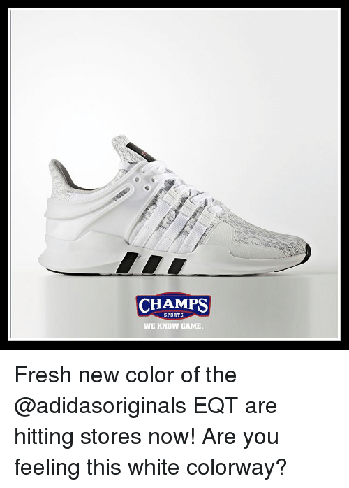 Fresh, Memes, and 🤖: CHAMPS  SPORTS  WE KNOW GAME. Fresh new color of the @adidasoriginals EQT are hitting stores now! Are you feeling this white colorway?