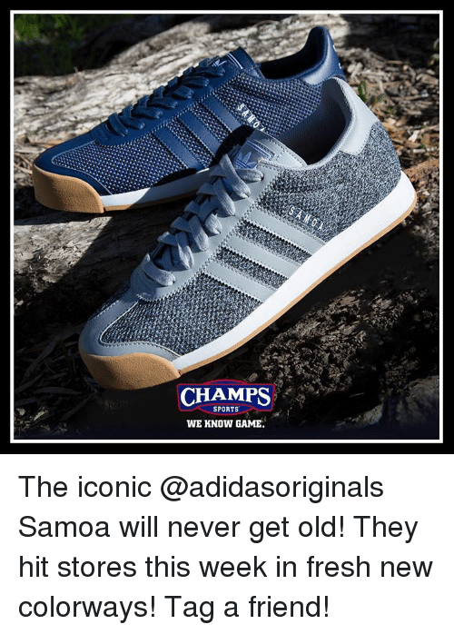 Fresh, Memes, and 🤖: CHAMPS  SPORTS  WE KNOW GAME. The iconic @adidasoriginals Samoa will never get old! They hit stores this week in fresh new colorways! Tag a friend!