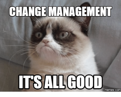 earning management is it good or Opportunism in earnings management therefore, improving good governance is  as important as improving accounting rules and standards in order to restrain.