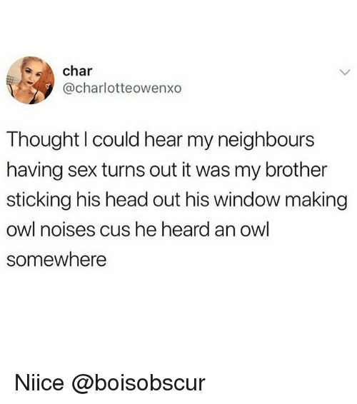 Funny, Head, and Sex: char  @charlotteowenxo  Thought l could hear my neighbours  having sex turns out it was my brother  sticking his head out his window making  owl noises cus he heard an owl  somewhere Niice @boisobscur