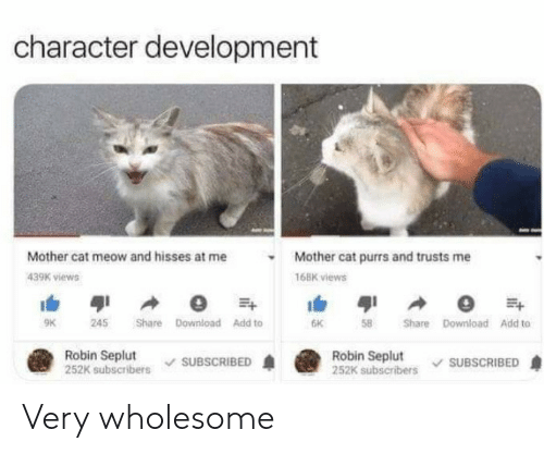 Wholesome, Cat, and Robin: character development  Mother cat meow and hisses at me  Mother cat purrs and trusts me  439K views  168K views  Share Download Add to  9K  245  6K  Share Download Add to  Robin Seplut  252K subscribers  Robin Seplut  252K subscribers  SUBSCRIBED  SUBSCRIBED Very wholesome