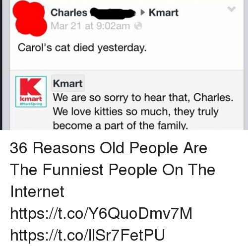 9ac1f8d082 Charles Kmart Mar 21 at 902 Am Carol s Cat Died Yesterday Kmart ...