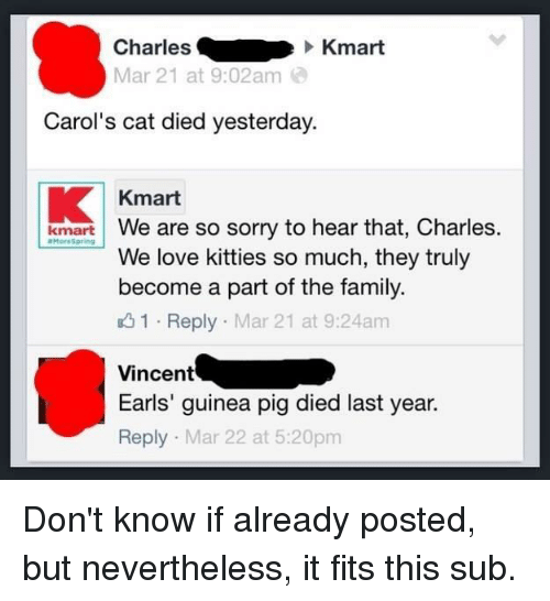 3f7ad9d6 Charles Kmart Mar 21 at 902am Carol's Cat Died Yesterday Kmart Kmart ...
