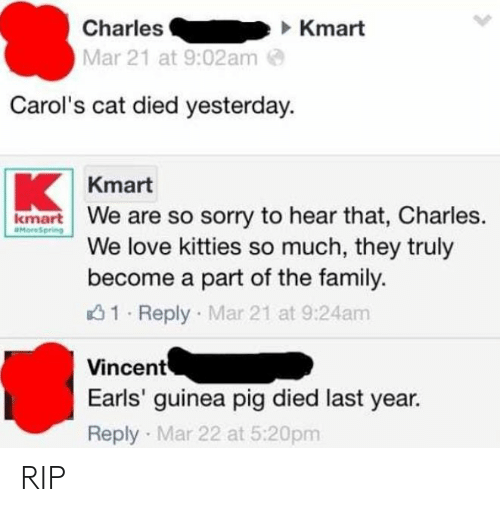 f723d1c126 CharlesKmart Mar 21 at 902am Carol s Cat Died Yesterday Kmart R We ...