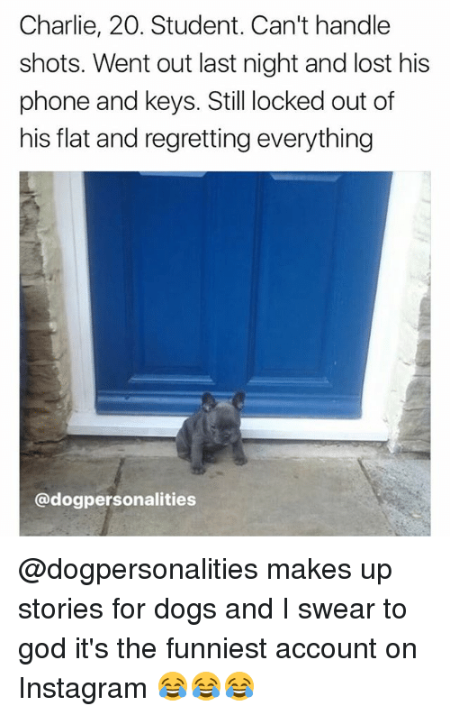 Charlie, Dogs, and God: Charlie, 20. Student. Can't handle  shots. Went out last night and lost his  phone and keys. Still locked out of  his flat and regretting everything  @dogpersonalities @dogpersonalities makes up stories for dogs and I swear to god it's the funniest account on Instagram 😂😂😂