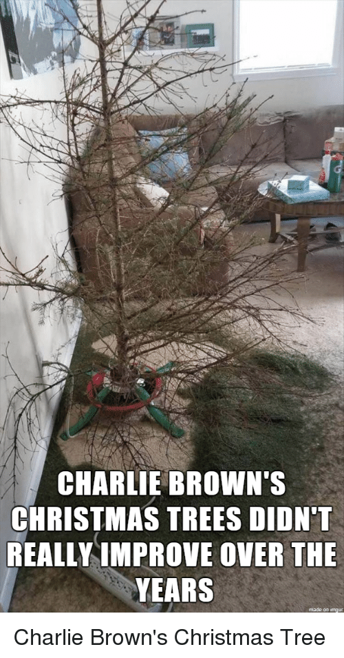 Charlie, Christmas, and Browns: CHARLIE BROWN'S CHRISTMAS TREES DIDN'1 REALLY IMPROVE