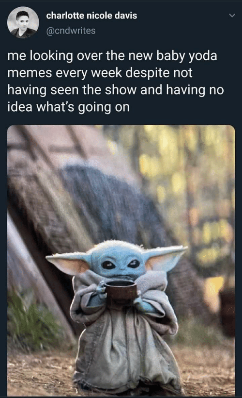Memes, Yoda, and Charlotte: charlotte nicole davis  @cndwrites  me looking over the new baby yoda  memes every week despite not  having seen the show and having no  idea what's going on