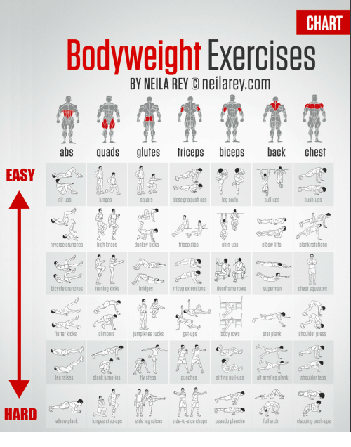 Tricep Exercise Chart